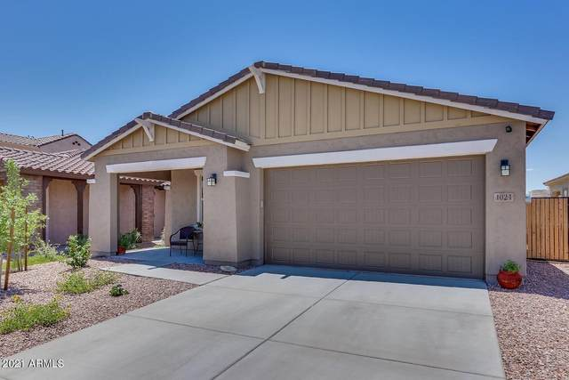 1024 S 200TH Lane, Buckeye, AZ 85326 (MLS #6264909) :: Yost Realty Group at RE/MAX Casa Grande