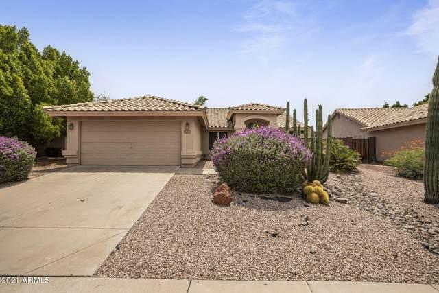 3527 N Ramada, Mesa, AZ 85215 (MLS #6264932) :: Yost Realty Group at RE/MAX Casa Grande