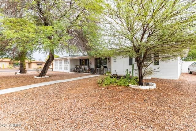 6127 E Butte Street, Mesa, AZ 85205 (MLS #6264963) :: The Dobbins Team