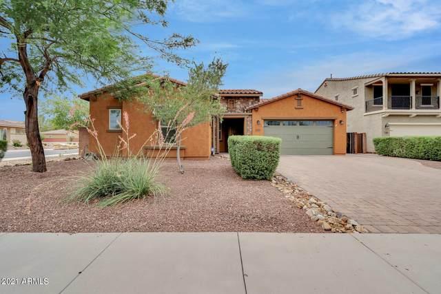 1179 E Goldcrest Street, Gilbert, AZ 85297 (MLS #6264979) :: Yost Realty Group at RE/MAX Casa Grande
