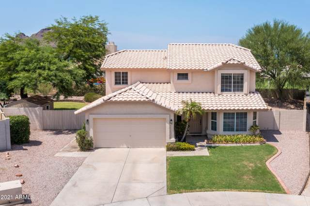 13620 N 19TH Place, Phoenix, AZ 85022 (MLS #6265124) :: Yost Realty Group at RE/MAX Casa Grande