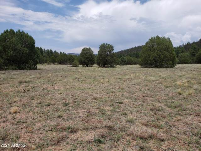 214-B E Cline Crossing, Young, AZ 85554 (MLS #6265148) :: Justin Brown   Venture Real Estate and Investment LLC