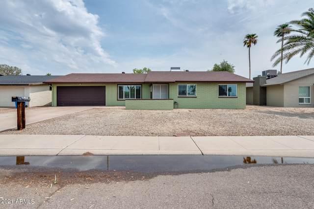 3858 W Malapai Drive, Phoenix, AZ 85051 (MLS #6265164) :: Yost Realty Group at RE/MAX Casa Grande