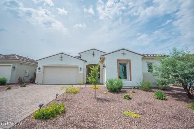 8509 W Myrtle Avenue, Glendale, AZ 85305 (MLS #6265233) :: Service First Realty