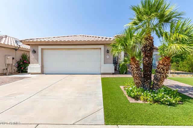 3536 E Kristal Way, Phoenix, AZ 85050 (MLS #6265240) :: Executive Realty Advisors