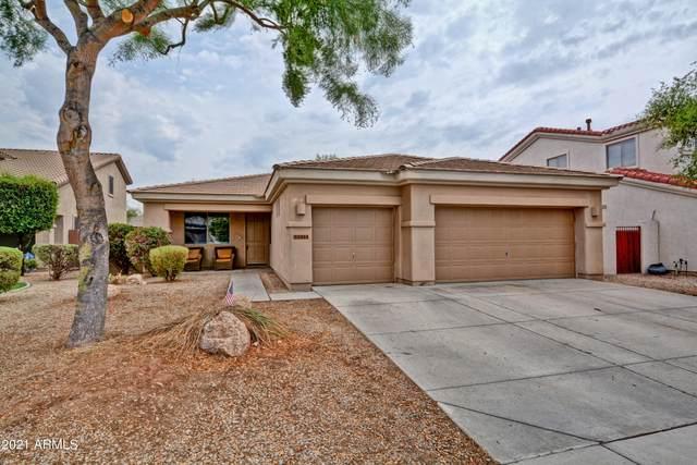 2927 N 140TH Drive, Goodyear, AZ 85395 (MLS #6265302) :: Yost Realty Group at RE/MAX Casa Grande