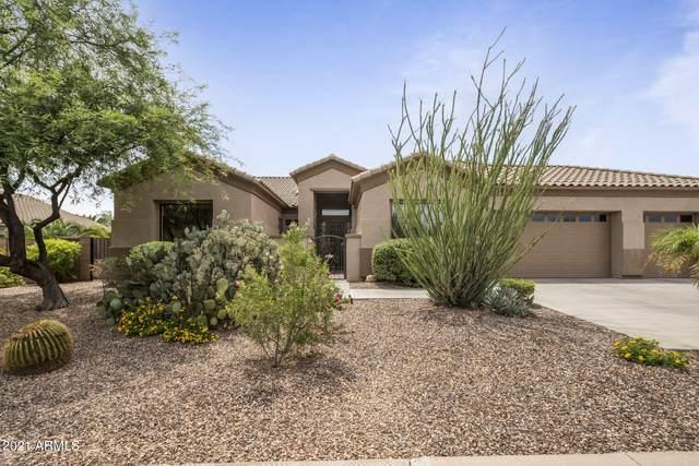 1028 N 113TH Place, Mesa, AZ 85207 (MLS #6265310) :: Yost Realty Group at RE/MAX Casa Grande
