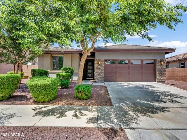 16246 W Cameron Drive, Surprise, AZ 85379 (MLS #6265311) :: Yost Realty Group at RE/MAX Casa Grande