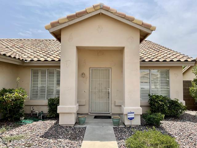 6405 E Virginia Street, Mesa, AZ 85215 (MLS #6265407) :: Yost Realty Group at RE/MAX Casa Grande