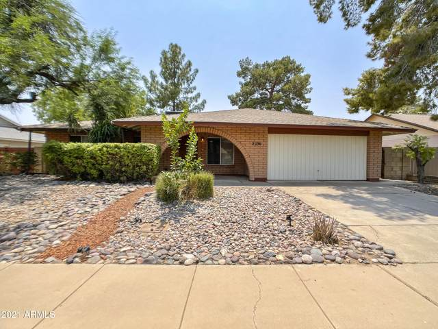 2236 S Elm, Mesa, AZ 85202 (MLS #6265417) :: My Home Group
