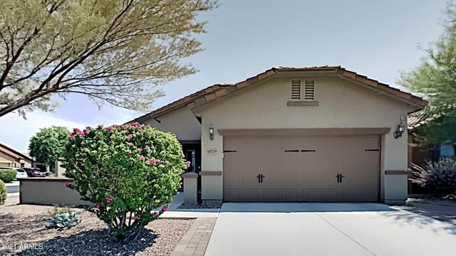 10779 W El Cortez Place, Peoria, AZ 85383 (MLS #6265434) :: The Laughton Team