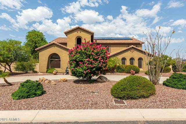 10906 N 146TH Avenue, Surprise, AZ 85379 (MLS #6265479) :: Yost Realty Group at RE/MAX Casa Grande