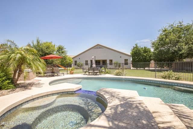 9423 W Salter Drive, Peoria, AZ 85382 (MLS #6265493) :: Howe Realty
