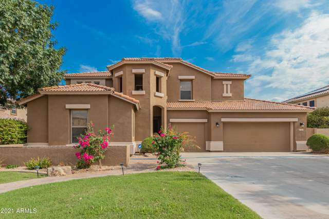 343 E Elgin Street, Gilbert, AZ 85295 (MLS #6265505) :: Yost Realty Group at RE/MAX Casa Grande