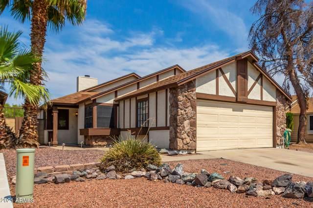 10817 N 63RD Drive, Glendale, AZ 85304 (MLS #6265515) :: Yost Realty Group at RE/MAX Casa Grande