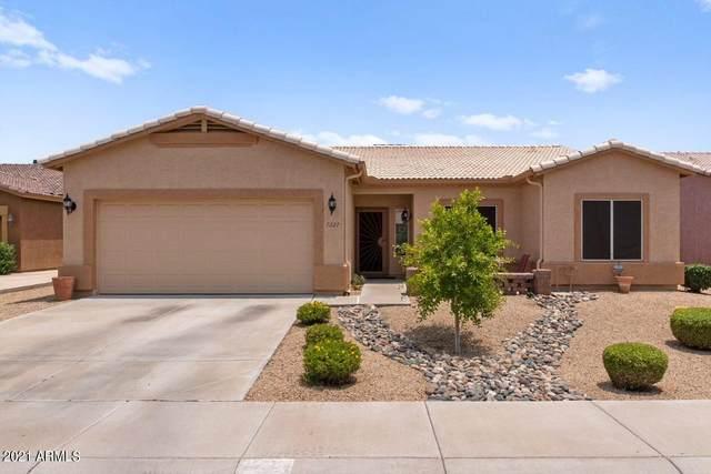 7227 N 23RD Lane, Phoenix, AZ 85021 (MLS #6265553) :: Executive Realty Advisors