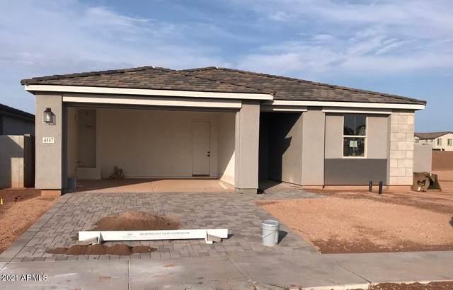 4557 S Element, Mesa, AZ 85212 (MLS #6265558) :: Yost Realty Group at RE/MAX Casa Grande