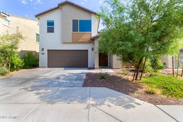 21158 W Holly Street, Buckeye, AZ 85396 (MLS #6265581) :: Yost Realty Group at RE/MAX Casa Grande