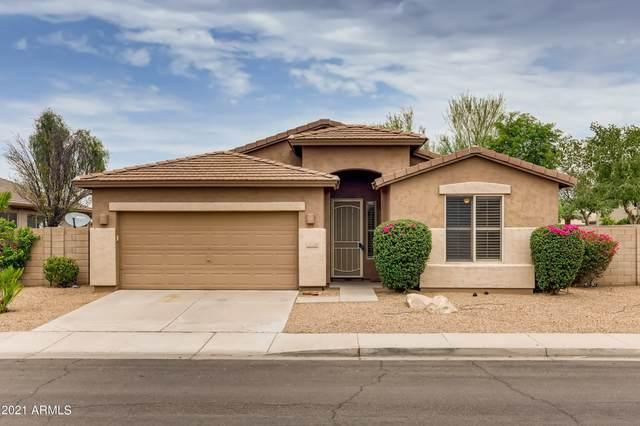 2820 E Carla Vista Drive, Chandler, AZ 85225 (MLS #6265598) :: Yost Realty Group at RE/MAX Casa Grande