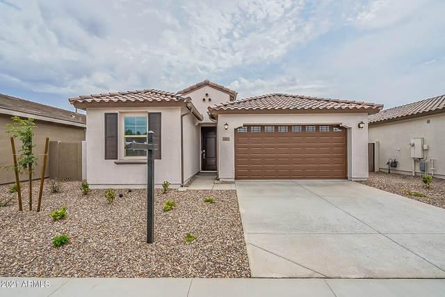 5893 S Arizona Place, Chandler, AZ 85249 (MLS #6265623) :: Keller Williams Realty Phoenix