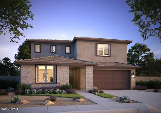 17743 W Jojoba Road, Goodyear, AZ 85338 (MLS #6265624) :: Yost Realty Group at RE/MAX Casa Grande