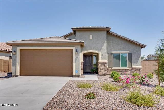 5937 W Autumn Vista Way, Florence, AZ 85132 (MLS #6265632) :: Elite Home Advisors