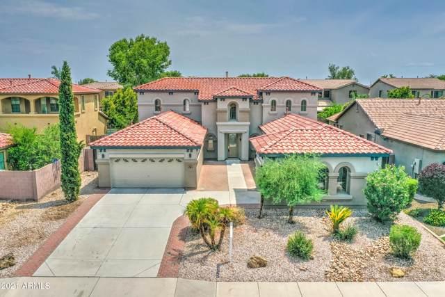 845 W Whitten Street, Chandler, AZ 85225 (MLS #6265640) :: Yost Realty Group at RE/MAX Casa Grande