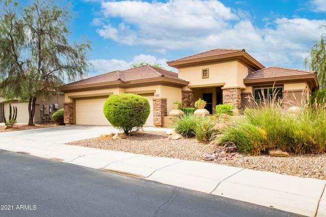 1625 W Ainsworth Drive, Phoenix, AZ 85086 (MLS #6265686) :: Keller Williams Realty Phoenix