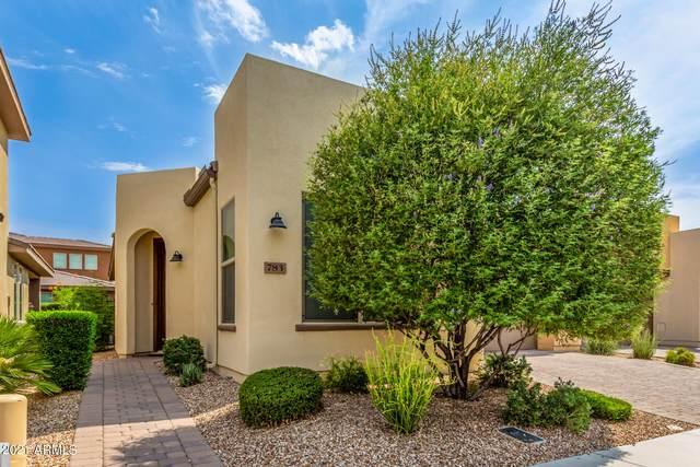 783 E Silversword Lane, San Tan Valley, AZ 85140 (MLS #6265696) :: Yost Realty Group at RE/MAX Casa Grande