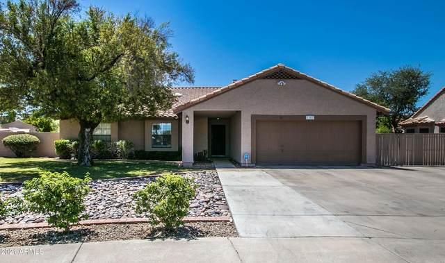 1987 E El Freda Road, Tempe, AZ 85284 (MLS #6265728) :: Yost Realty Group at RE/MAX Casa Grande
