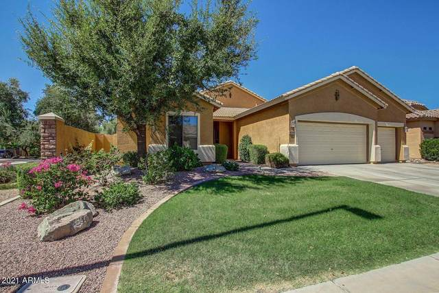 4240 E Andre Avenue, Gilbert, AZ 85298 (MLS #6265738) :: Openshaw Real Estate Group in partnership with The Jesse Herfel Real Estate Group