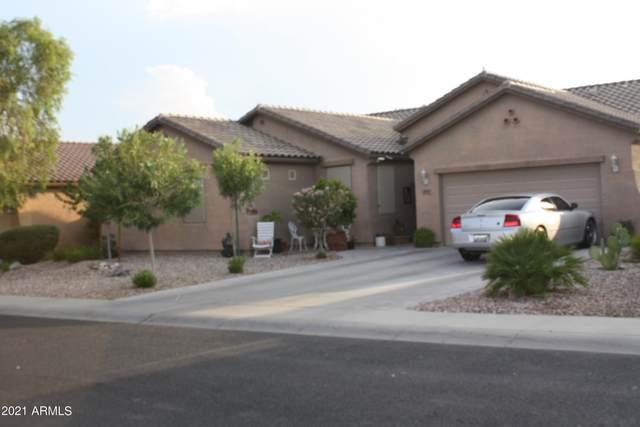 1842 S 222ND Lane, Buckeye, AZ 85326 (MLS #6265769) :: Yost Realty Group at RE/MAX Casa Grande