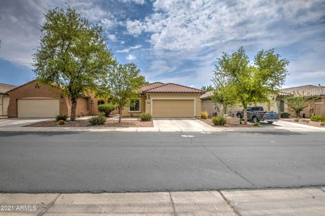 2289 N Pecos Drive, Florence, AZ 85132 (MLS #6265808) :: Yost Realty Group at RE/MAX Casa Grande