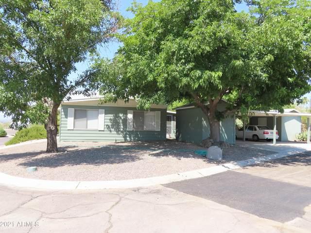 2501 W Wickenburg Way #79, Wickenburg, AZ 85390 (MLS #6265837) :: Maison DeBlanc Real Estate