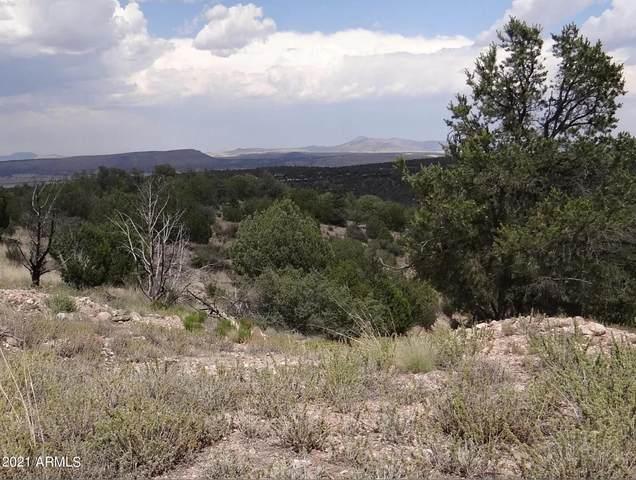 00 N Ridge Runner Road, Seligman, AZ 86337 (MLS #6265842) :: The Laughton Team