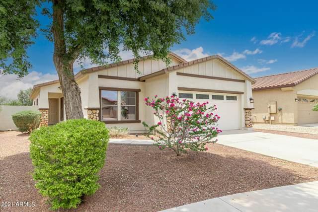 14864 N 138TH Lane, Surprise, AZ 85379 (MLS #6265890) :: Yost Realty Group at RE/MAX Casa Grande