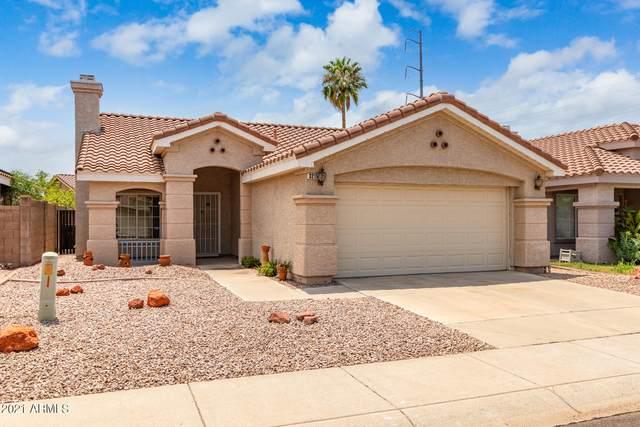 3215 E Menadota Drive, Phoenix, AZ 85050 (MLS #6265964) :: Executive Realty Advisors