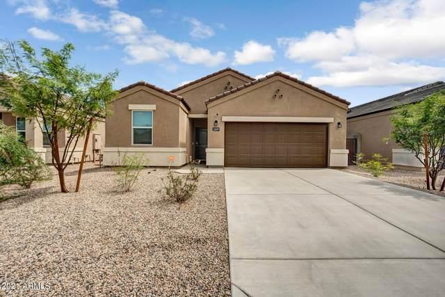 36397 W Pampoloma Avenue, Maricopa, AZ 85138 (MLS #6265965) :: Yost Realty Group at RE/MAX Casa Grande