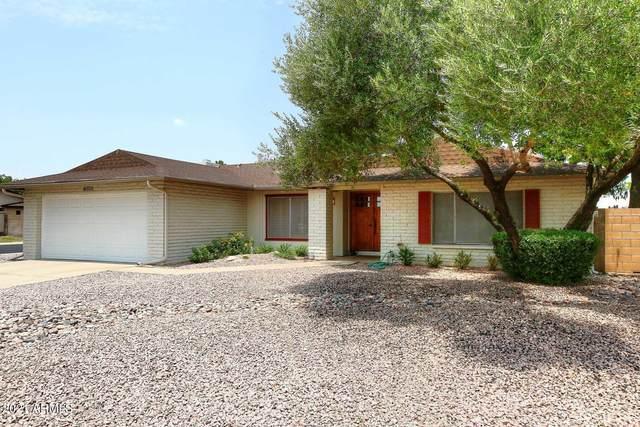 4902 E Crocus Drive, Scottsdale, AZ 85254 (MLS #6266055) :: Yost Realty Group at RE/MAX Casa Grande