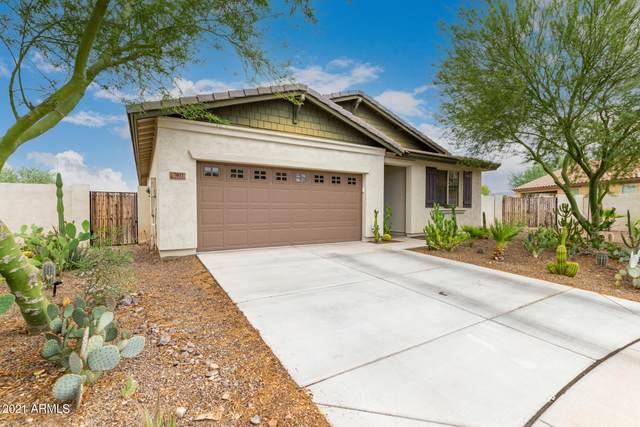 7011 S 19TH Drive, Phoenix, AZ 85041 (MLS #6266132) :: Yost Realty Group at RE/MAX Casa Grande