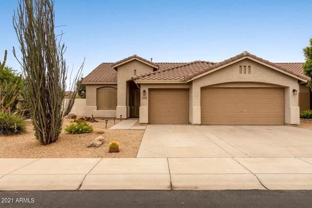 5444 W Greenbriar Drive, Glendale, AZ 85308 (MLS #6266200) :: Yost Realty Group at RE/MAX Casa Grande