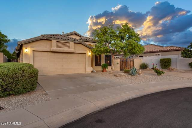 10254 W Patrick Lane, Peoria, AZ 85383 (MLS #6266221) :: The Bole Group | eXp Realty