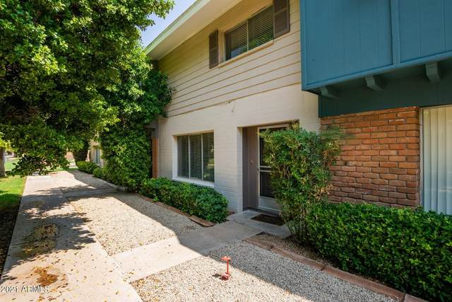 6111 N Granite Reef Road, Scottsdale, AZ 85250 (MLS #6266252) :: Yost Realty Group at RE/MAX Casa Grande
