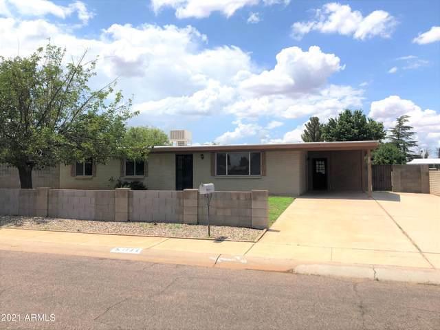 173 School Drive, Sierra Vista, AZ 85635 (MLS #6266267) :: Yost Realty Group at RE/MAX Casa Grande