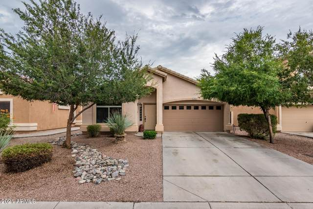 1336 E Shari Street, San Tan Valley, AZ 85140 (MLS #6266333) :: Klaus Team Real Estate Solutions
