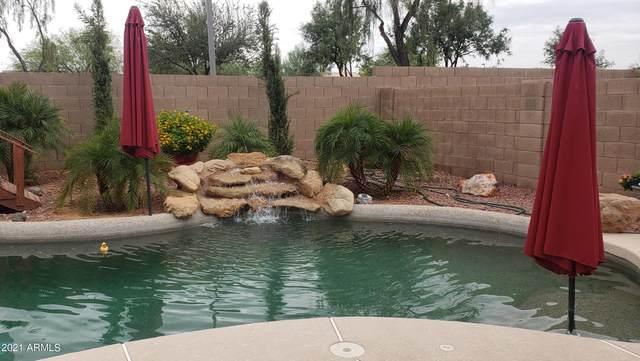 17132 N Melissa Lane, Surprise, AZ 85374 (MLS #6266401) :: Executive Realty Advisors