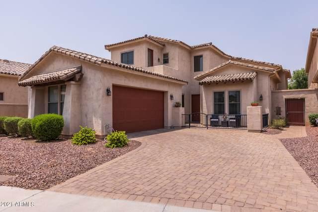 14561 W Hidden Terrace Loop, Litchfield Park, AZ 85340 (MLS #6266424) :: Yost Realty Group at RE/MAX Casa Grande