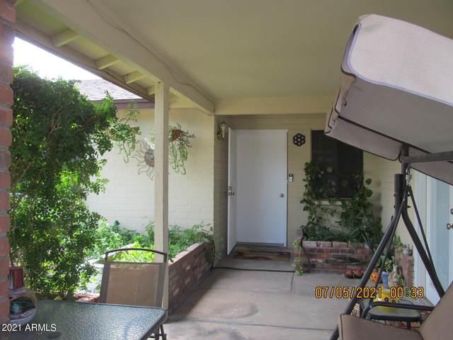901 W Bluefield Avenue, Phoenix, AZ 85023 (MLS #6266458) :: Yost Realty Group at RE/MAX Casa Grande