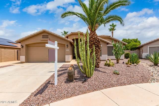 11142 W Sheridan Street, Avondale, AZ 85392 (MLS #6266483) :: Executive Realty Advisors