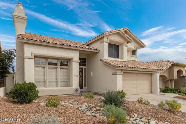 16047 S 24TH Place, Phoenix, AZ 85048 (MLS #6266500) :: Devor Real Estate Associates
